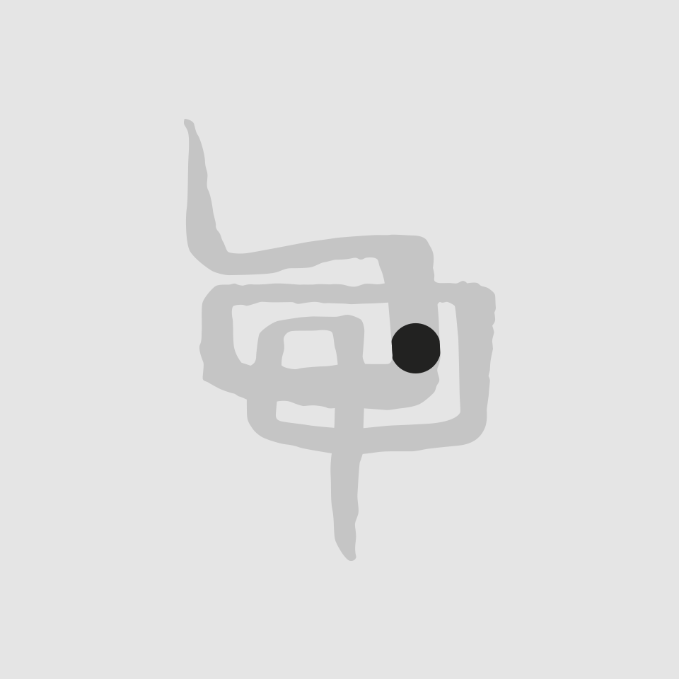 Diseño logotipo Doctores Pascual Digestivo
