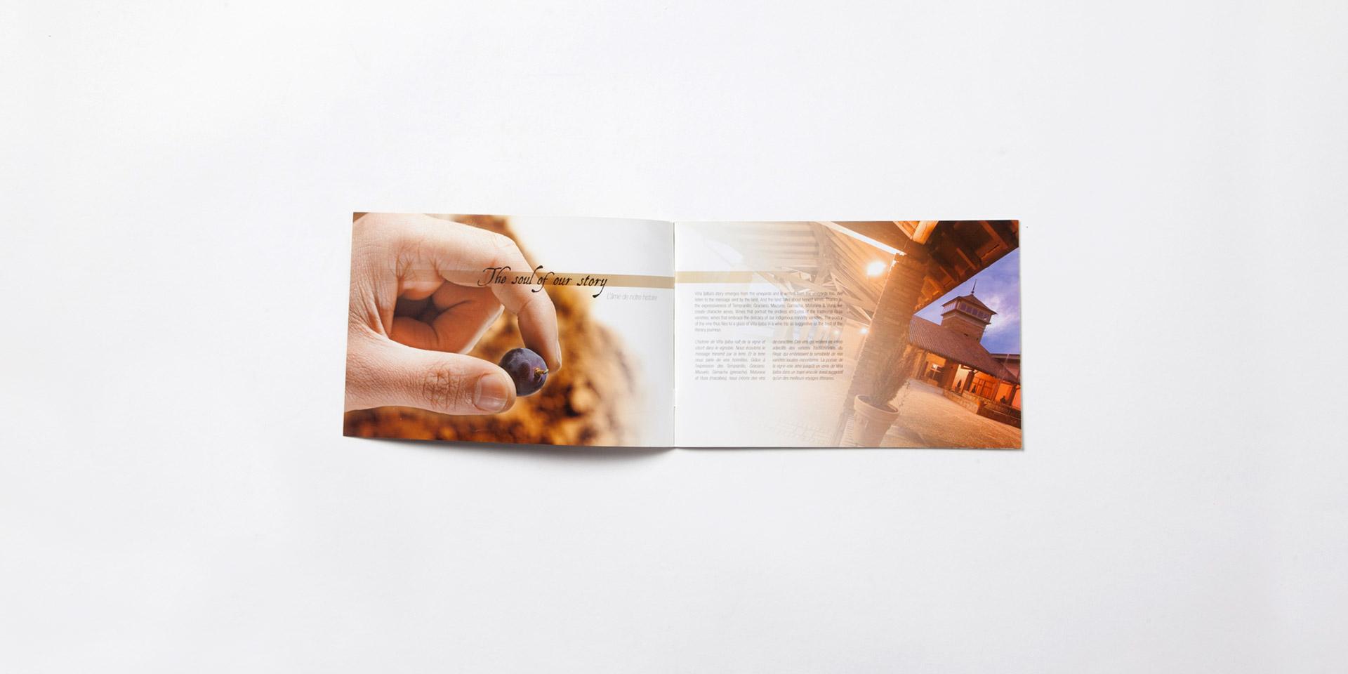 Diseño catalogo vino Ijalba