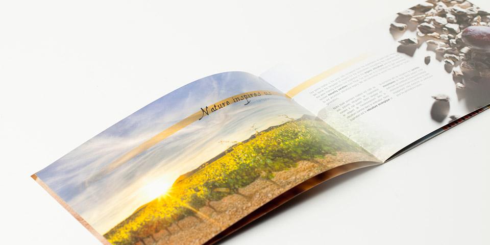 Diseño catalogo imagen Bodegas Ijalba