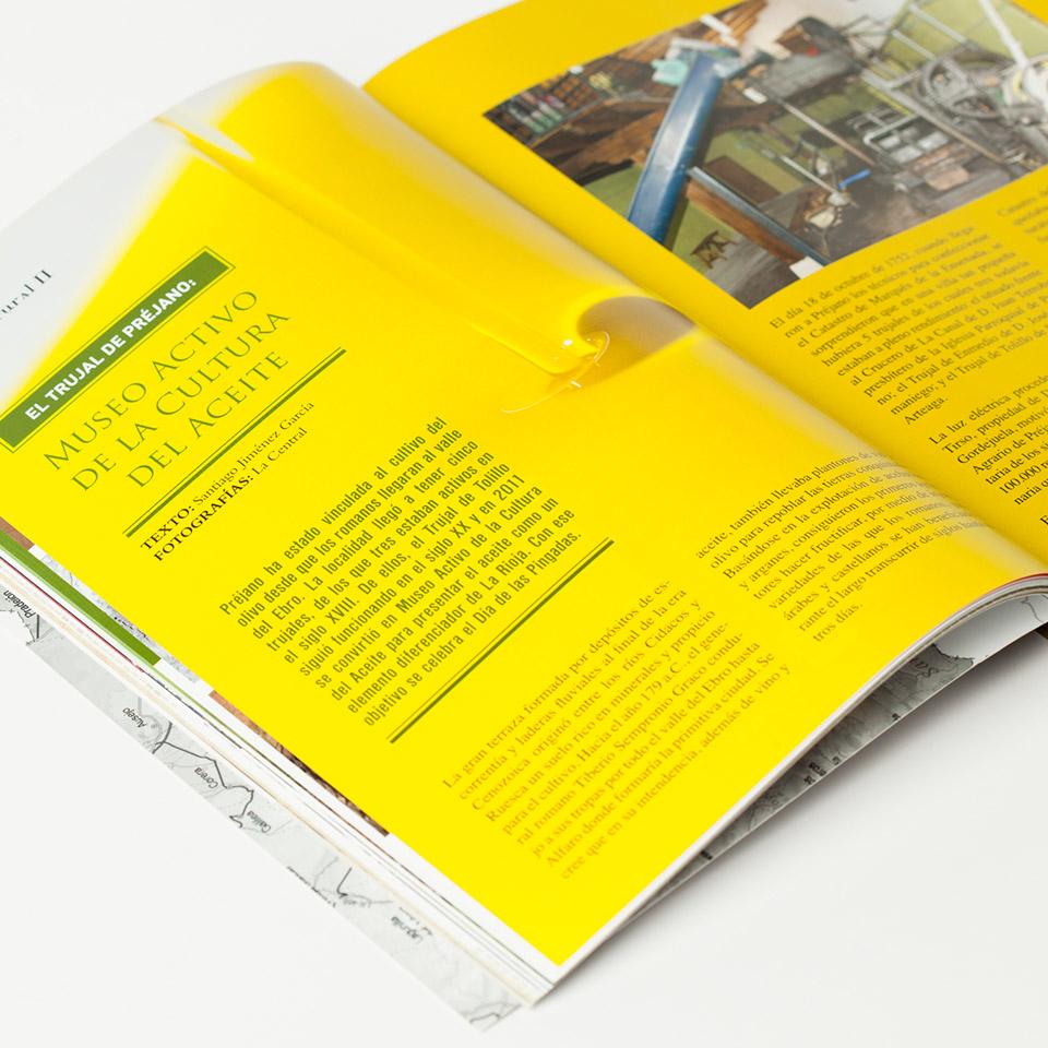 Diseño y maquetacion revista belezos