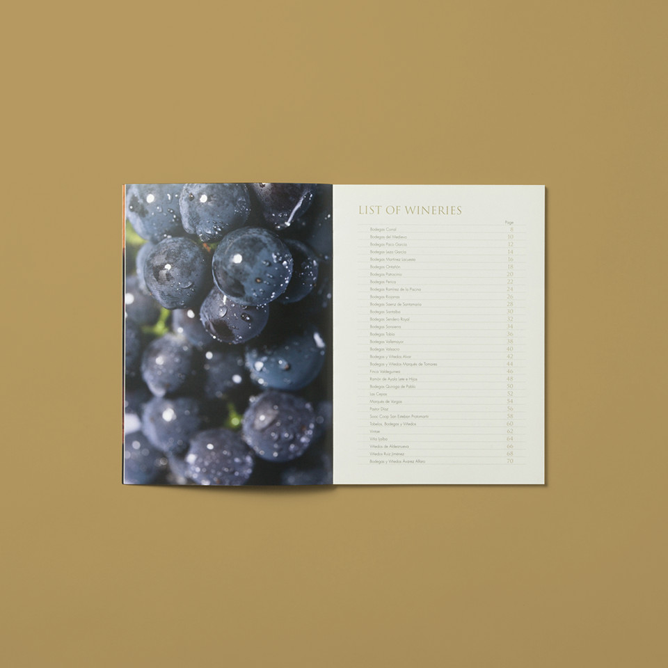 Diseño catalogo promocion bodegas rioja World Wide Meeting 2012