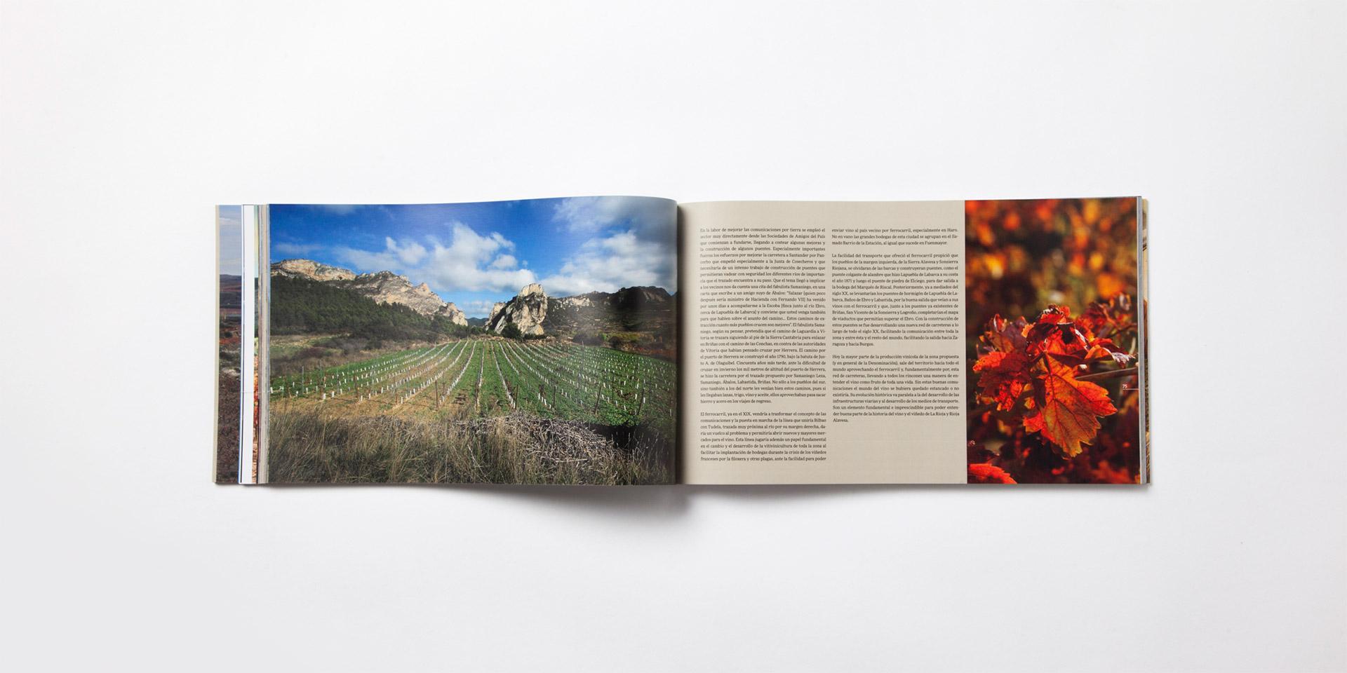 Diseño catalogo paisajes del vino