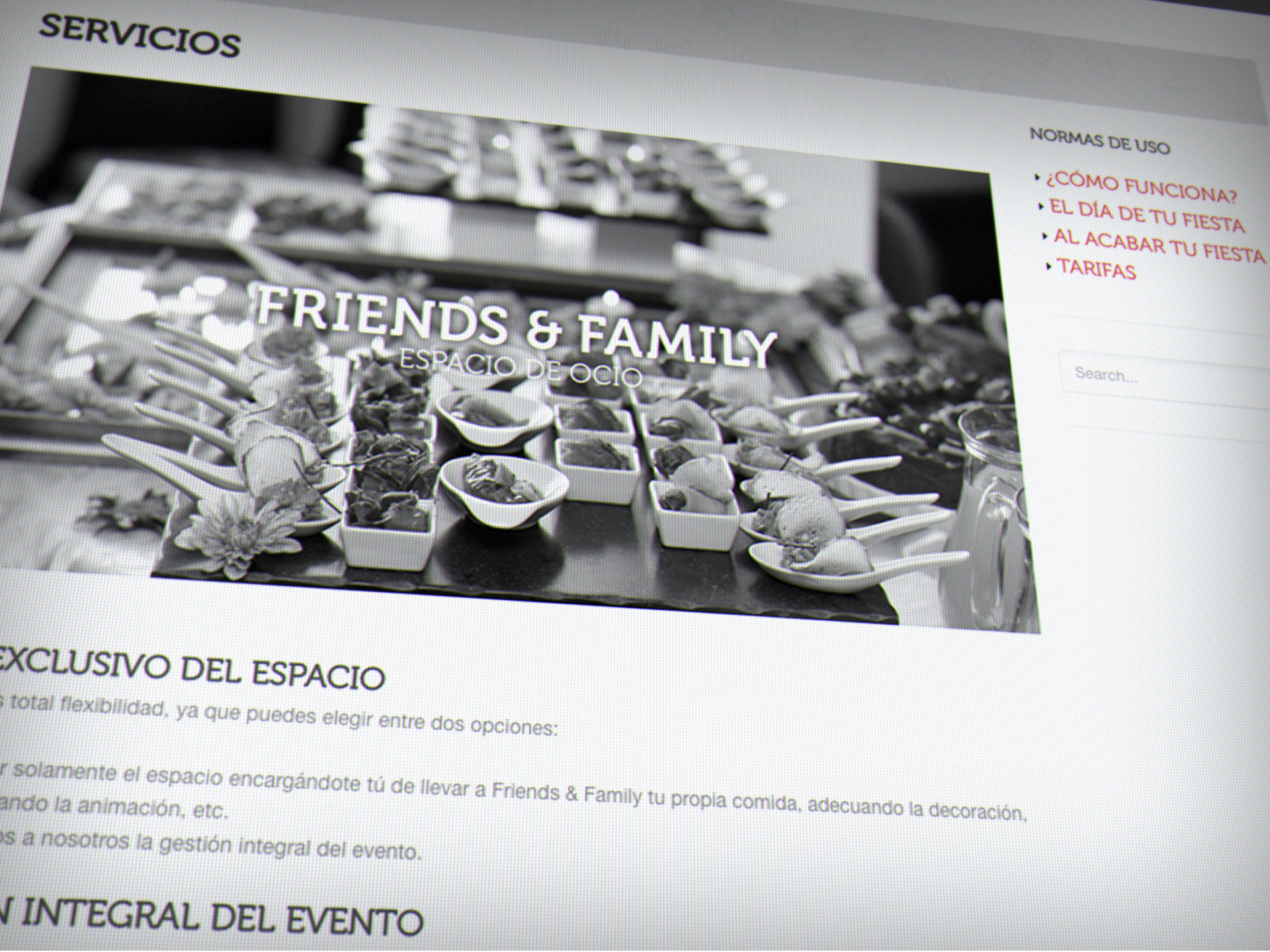diseno web friends family logrono larioja