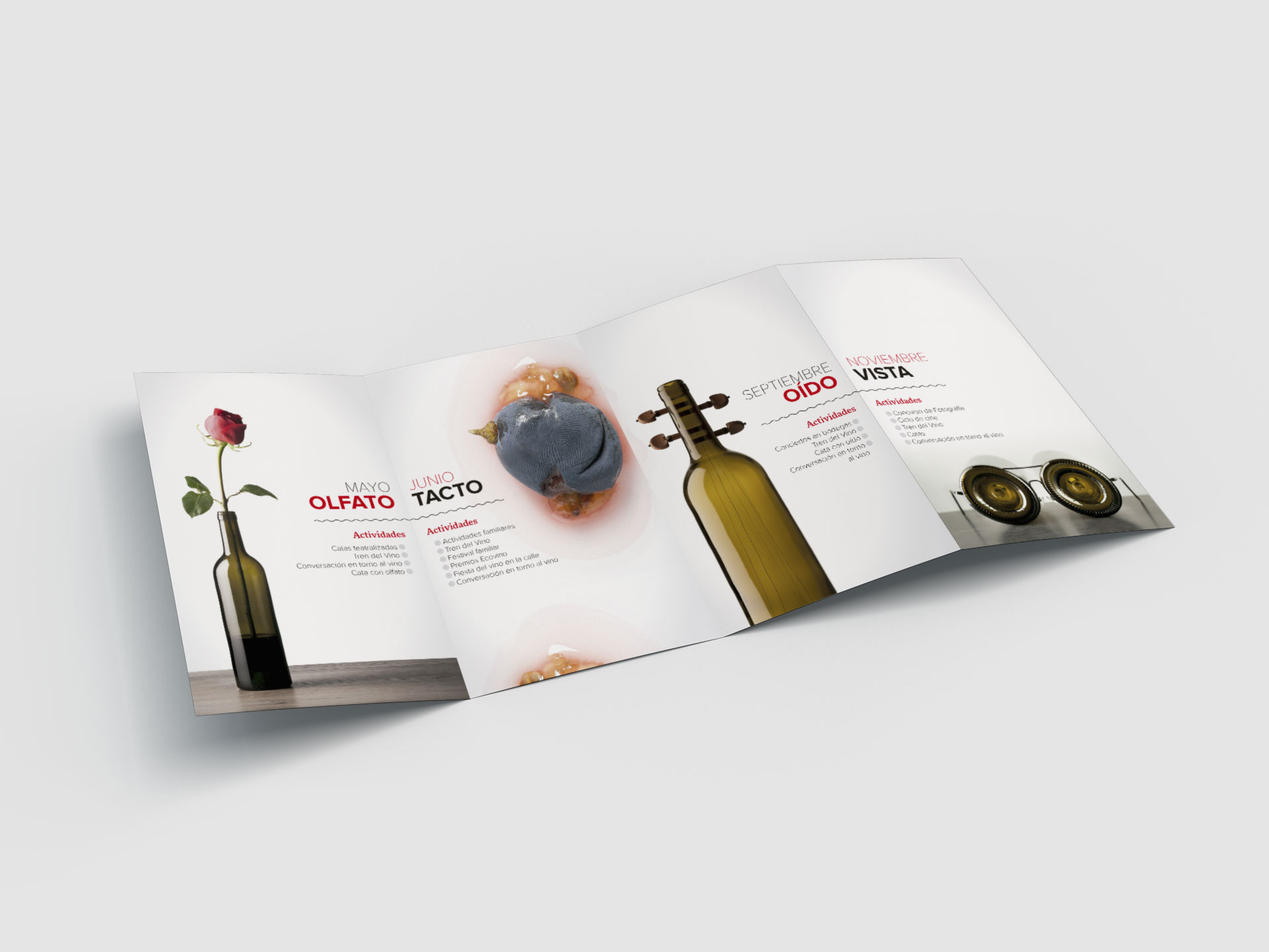 Diseño folleto el rioja y los 5 sentidos interior