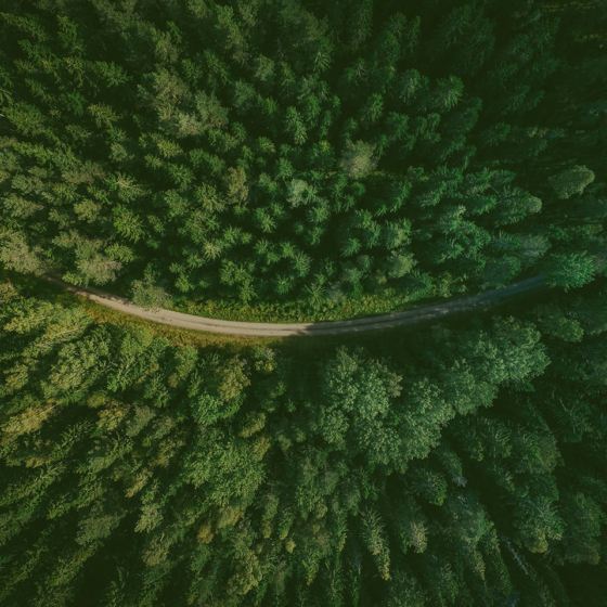 Grupo operativo de innovación forestal LiDAR «Forest LidaRioja»