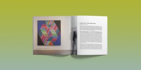 detalle catalogo exposicion chromosaturation museo wurth larioja