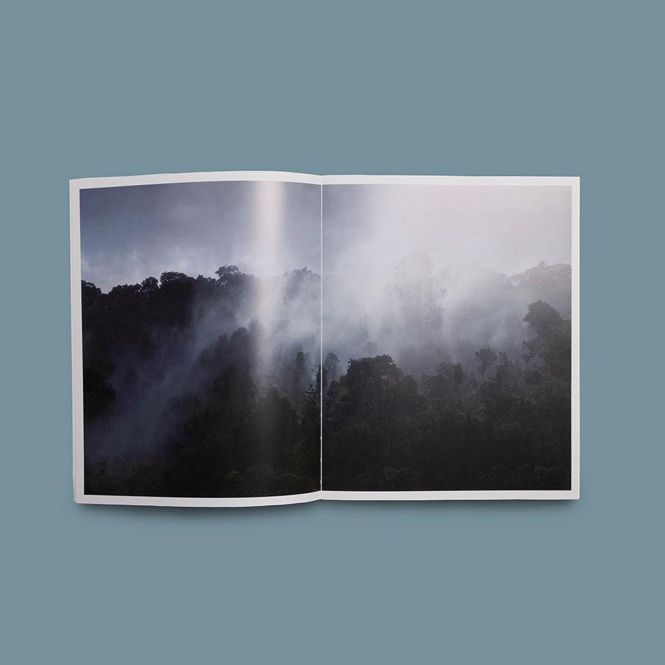 catalogo universo bosque museo würth la rioja