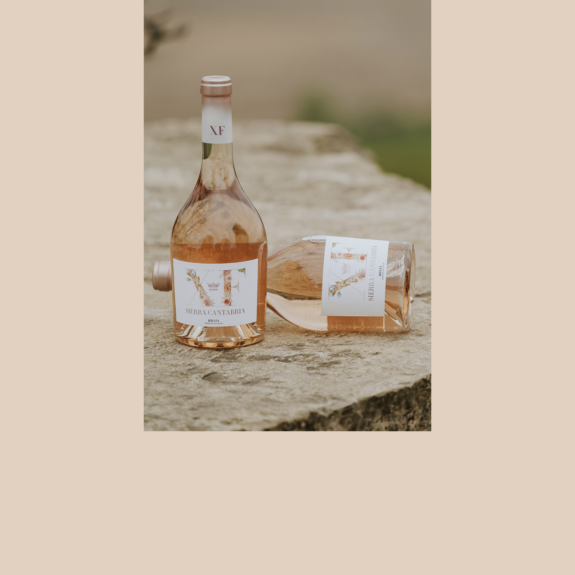 Design packaging label rose wine XF Sierra Cantabria